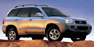 2004 Hyundai Santa Fe , 29168A, Photo 1