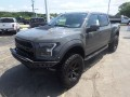 2018 Ford F-150 Raptor, SCA19496, Photo 12