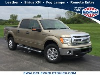 Used, 2013 Ford F-150, Gold, GP4448A-1