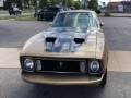 1973 Ford Mustang Mach 1, 185519, Photo 3