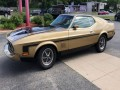 1973 Ford Mustang Mach 1, 185519, Photo 4