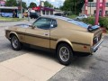 1973 Ford Mustang Mach 1, 185519, Photo 6