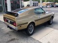 1973 Ford Mustang Mach 1, 185519, Photo 8