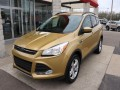 2015 Ford Escape SE 4WD, C66193, Photo 4