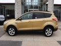 2015 Ford Escape SE 4WD, C66193, Photo 5