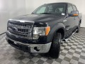 2013 Ford F-150 XLT, P16012A, Photo 5