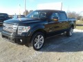 2014 Ford F-150 Limited, 100312, Photo 7